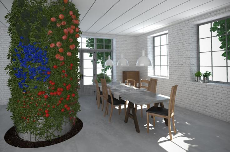 Vegetable Column 1